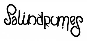 palindromes-ambigram